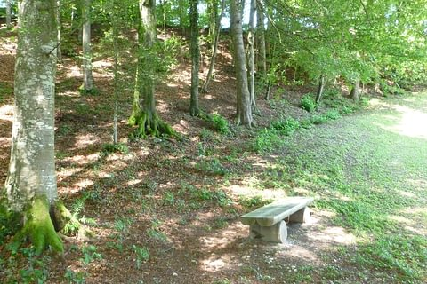 Waldfriedhof Reitnau
