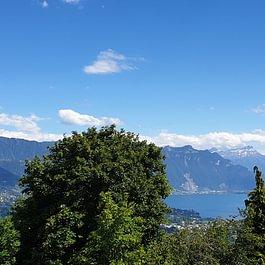 Mt-Pélerin, magnifique vue et tranquillité pour ce ravissant 3,5 pièces