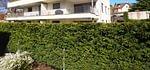Moderne Eigentumswohnung mit Terrasse und Carport in Dornach zu verkaufen