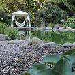 Wasser im Garten lädt zum Schwimmen ein...