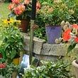 Flükiger Gartenbau