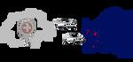 Véhicules de fonction immatriculés en Suisse