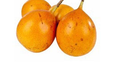 Passiflore Fruit exotique 1und