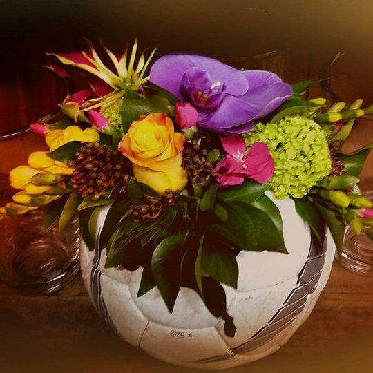 Aebi Fleurs