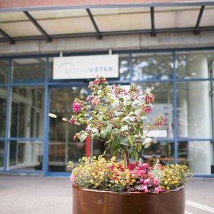 Eingang Spital Uster