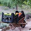 The Garden on the Lake (Bon Rivage) - Jardin potager