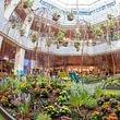 Gartengestaltung Mythen Center