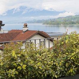 Terrassenbegrünung