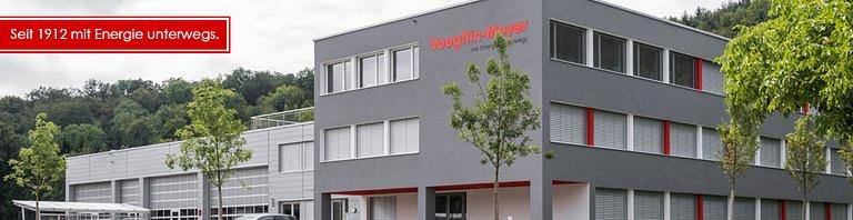 Voegtlin - Meyer AG
