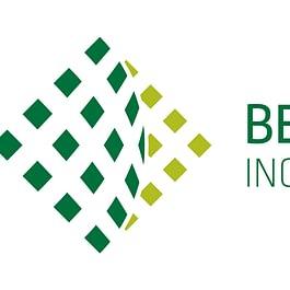 Bernasconi e Forrer ingegneria e misurazioni SA - Logo