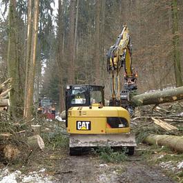 Forstarbeiten, Walddurchforstungen