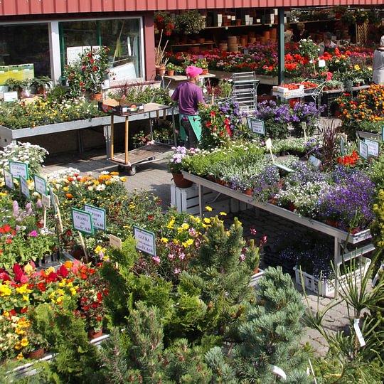 Garden Centre Meylan