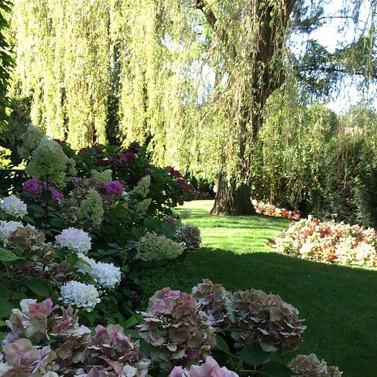 Royal Jardin