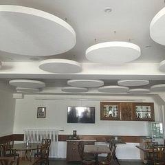 correction acoustique salle restaurant - Trisconi-Anchise SA