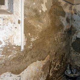 Feuchter Keller vorher