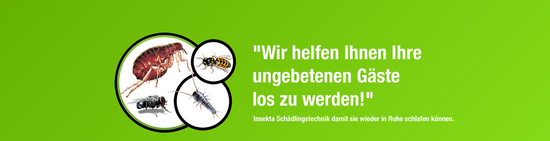 Insekta Schädlingstechnik GmbH