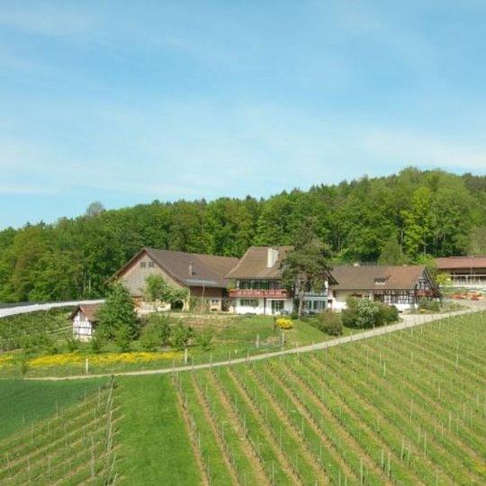 Guldenberg AG, Embrach/ZH