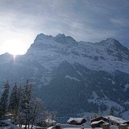 Aussicht Eiger Central Hotel Wolter Grindelwald