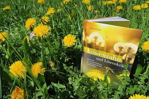 """Buch """"Löwenzahn und Löwenkraft"""""""