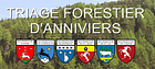 Triage Forestier Anniviers