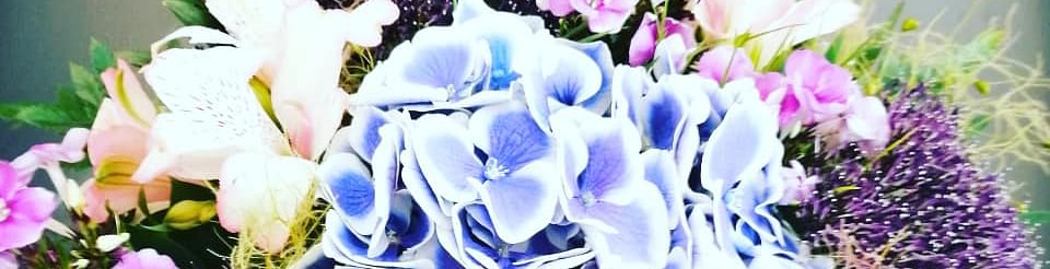 La Poésie des Fleurs Sàrl