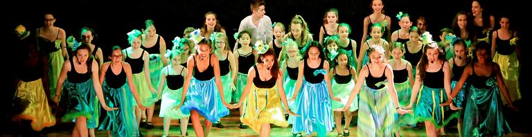 ACMGE Académie de Comédie Musicale de Genève