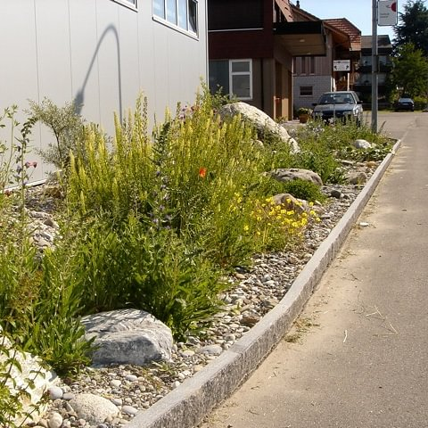 Strub Naturgartenbau