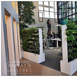 Unsere Innenbegrünungs-Projekt in Basel