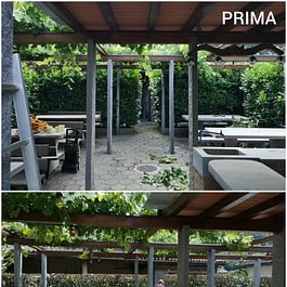 Manutenzione Giardino - Giardini ArteVerde Sagl