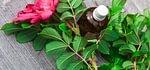 Massage Thaï à l'huile & Pochons - formation continue ASCA