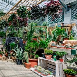Burnier Garden Centre de Lavaux
