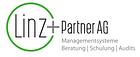 Linz Partner AG