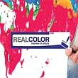 impresa di pittura realcolor lugano