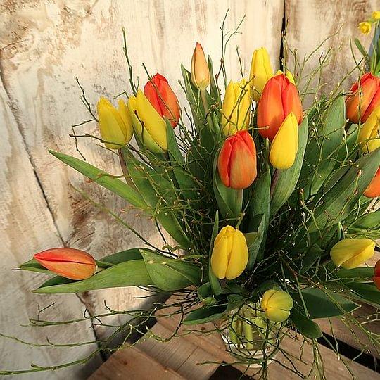 Tulpen in Hülle und Fülle ab Eigenproduktion. Bundweise, Sträusse, Tulpentäschli und Gestecke. Nehmen Sie mit uns Kontakt auf.