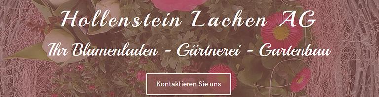 Hollenstein Lachen AG