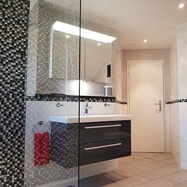 Wandplatten in Kombination mit Mosaikplatten