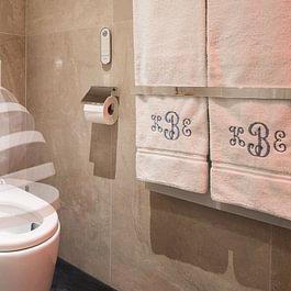 Dusch-WC, die Reinigung mit Wasser nach dem Toilettengang