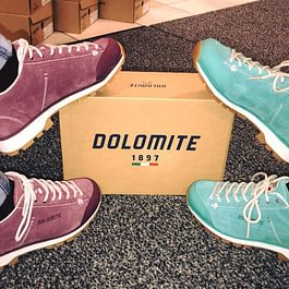 Chaussures sportives
