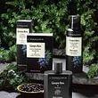 Ginepro Nero: Una fragranza energizzante, coraggiosa e decisa, da indossare ogni giorno con orgoglio