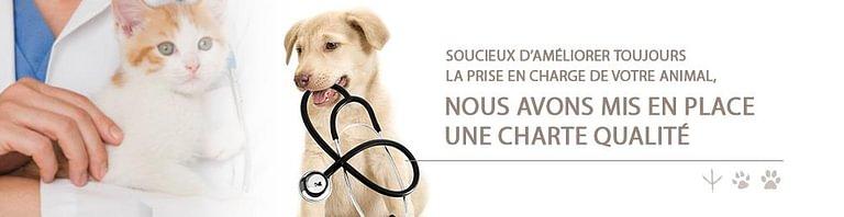 Cabinet vétérinaire des Tuileries