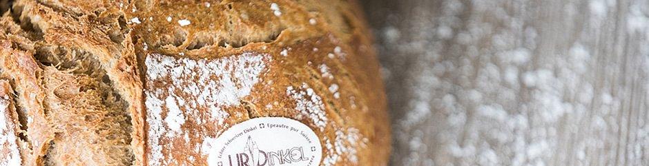 Bäckerei-Konditorei Sterchi AG