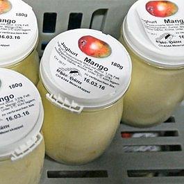 Büffelmilch-Joghurt Mango