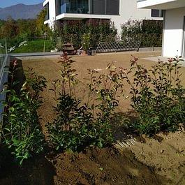 Simone Demartini manutenzione giardini e lavori forestali sagl