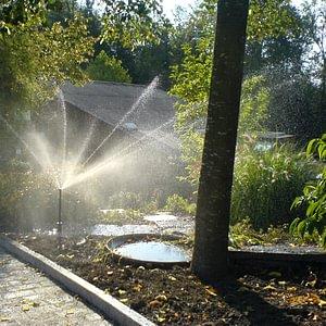 Bewässerung mit MP-Rotator Düsen