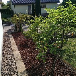 Gartenplanung, Umbauten,