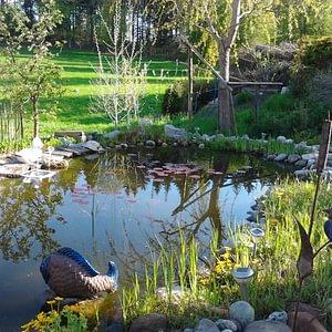 Création de jardins, étangs, rocaille