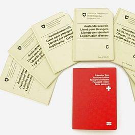 droit des étrangers, autorisation de séjour, autorisation d'établissement, regroupement familial, naturalisation