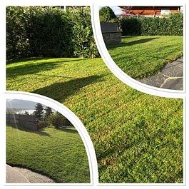prati, semina e taglio erba