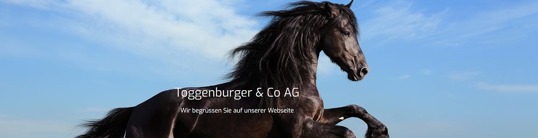 Toggenburger & Co AG