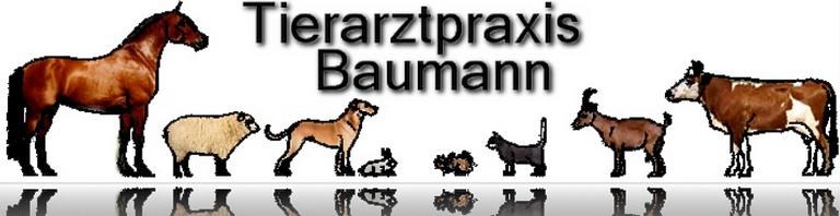 Baumann W. MSc